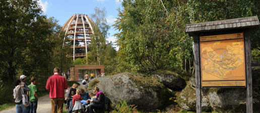 Treetop walk in the Bavarian Forest National Park